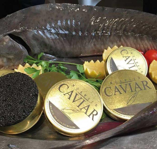 Kulinarium-Austria: Mörwald Caviar