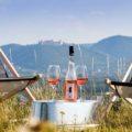 kulinarium austria, chic nic 2019, kremser kobl, Reinhard Winiwarter Winery, grill menu