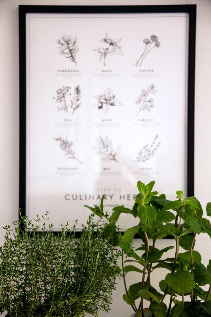 kulinarium austria, ideen kuechendeko, poster store, dekotipps kueche